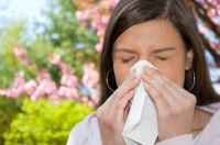 Podle statistik trpí alergickou rýmou 1,3 milionu Čechů a 800 tisíc lidí má alergické astma. Největším nebezpečím pro alergiky je pyl a nadcházející jaro je z tohoto hlediska nejvíc zátěžovým obdobím.