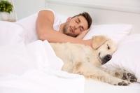 Klidný spánek s mazlíčky bez nezvaných hostů